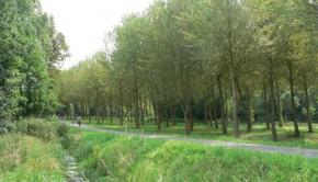 nederland04_4