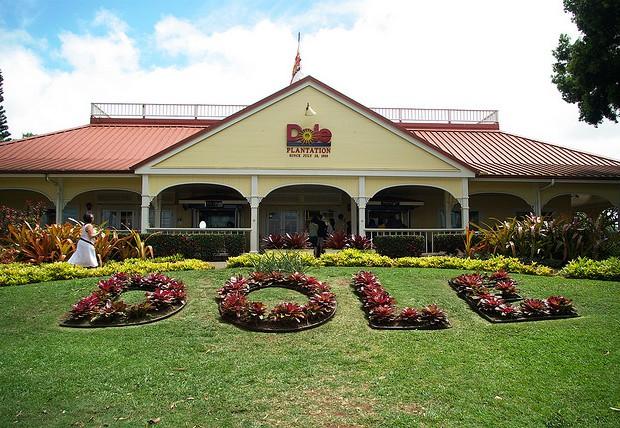 【ハワイ総研126】トレインや迷路もオトクに楽しめる…3月1日は「ドールプランテーション」のファミリーデー